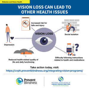 Vision Health Issue Brief Infographics